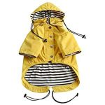 10 Recommendations: Best Raincoats for Corgis (Oct  2020): Excellent cut with pockets