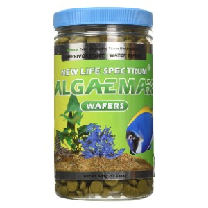 New Life International AlgaeMax 12mm Wafers - Best Fish Food for Guppies: Immune System Booster