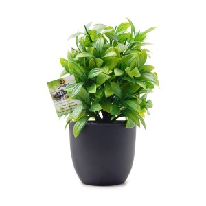 OFFIDIX  Artificial Eucalyptus Plants  - Best Artificial Plants on Amazon: Easy to Clean and Care