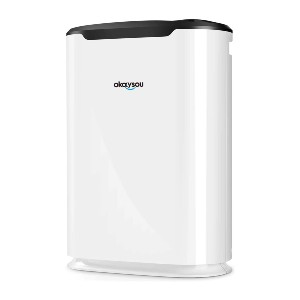 Okaysou Air Purifier with Washable Ultra-Duo 2 Filters - Best Air Purifier Dog Hair: Quiet Air Purifier