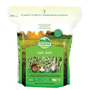 Oxbow Oat Hay Small Animal Food - Best Rabbit Food for Gain Weight: Great for Dental Health
