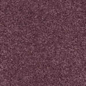Carpet Court PASSIONATE - Best Carpet for Bedroom: Fancy A Gorgeously Soft and High Performing Carpet
