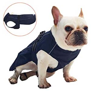 Pro Plums Dog Raincoat Adjustable Lightweight Jacket - Best Raincoats for Corgis: Covers the neck to the base of the tail