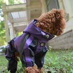 10 Recommendations: Best Raincoats for Big Dogs (Oct  2020): Full protection rain gear