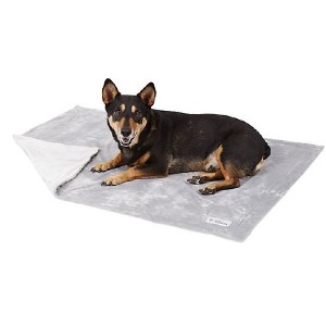 PetFusion Premium Reversible Dog & Cat Blanket - Best Dog Blankets for Sofa: Warm in style