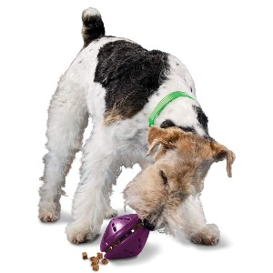 PetSafe Busy Buddy Twist 'n Treat - Best Dog Toys to Keep Them Busy: Excellent Feeder Toy