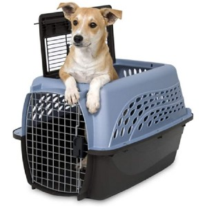 Petmate Two Door Top Load  - Best Pet Carrier for Small Dogs: Safe in hard case