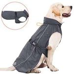 10 Recommendations: Best Raincoats for Big Dogs (Oct  2020): Dry as bone