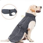10 Reviews: Best Raincoats for Dogs (Oct  2020): Raincoat with Harness Hole