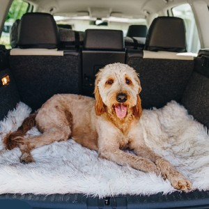 Paw PupRug™ Portable Orthopedic Dog Bed - Best Dog Travel Beds: High-quality memory foam