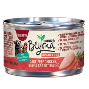 Purina Beyond Grain-Free Chicken, Beef & Carrot Recipe in Gravy Canned Cat Food - Best Food for Cats with Kidney Disease: Affordable Food for Kidney Support