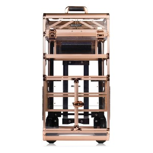 SHANY REBEL NUDE - Best Makeup Train Case: Clear Acrylic Material with Large Drawers and Locks