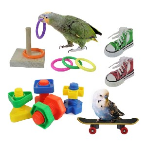 RYPET RYPET Bird Training Toy 8 Pack  - Best Bird Toys for Conures: Great for training