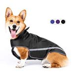 10 Recommendations: Best Raincoats for Corgis (Oct  2020): Highly adjustable for perfect fit