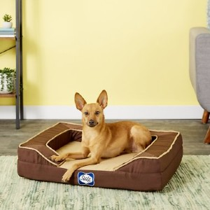 Sealy Lux Premium Orthopedic Bolster Dog Bed w/Removable Cover - Best Dog Beds for Older Dogs: Good Bed for Dog's Joint