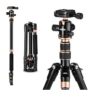 "TYCKA Rangers 56"" Compact Travel Tripod - Best Portable Tripods for DSLR Camera: Easy to set-up"
