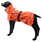 10 Recommendations: Best Raincoats for Big Dogs (Oct  2020): Looks smart, less dirty