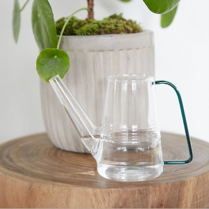 Terrain Glass Watering Can - Best Watering Can for Indoor Plants: Easy to Clean with Soft Cloth