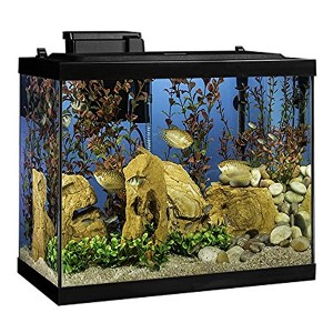 Tetra Aquarium 20 Gallon Fish Tank Kit - Best Tank for a Turtle: A complete package