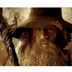 Paint by Numbers Love The Magical Journey of Hobbit - Best Paint by Number Kits for Adults: Gandalf the Grey
