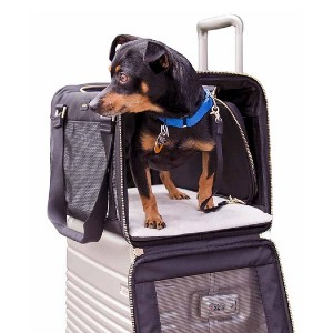 Arlo Skye The Pet Carrier - Best Pet Carriers for Flying: Practical and chic