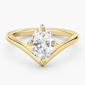 VRAI The Signature V - Best Jewelry for Engagement Ring: Lifetime care service package