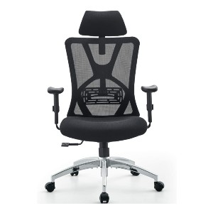 Ticova High Back Desk Chair with Adjustable Lumbar Support & Thick Seat Cushion - Best Office Chair with Headrest: Adjustable Features
