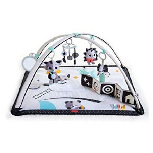 Tiny Love Black & White Gymini Infant Activity Play Mat - Best Musical Toys for Babies: Mini gym for your baby