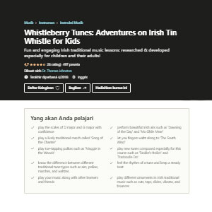 Udemy Whistleberry Tunes: Adventures on Irish Tin Whistle - Best Online Tin Whistle Lessons: Fun and Engaging Tin Whistle Lesson