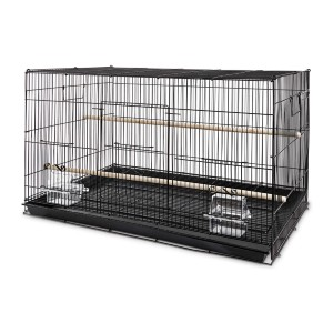 You & Me Finch Rectangle Flight Cage - Best Bird Cage for Finches: Great for starter