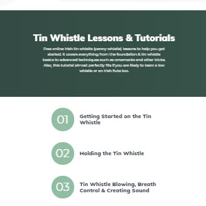 Learn Tin Whistle Tin Whistle Lessons & Tutorials - Best Online Tin Whistle Lessons: From Basic to Advanced Learners