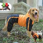 10 Recommendations: Best Raincoats for Big Dogs (Oct  2020): Keeps your dog clean