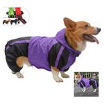10 Recommendations: Best Raincoats for Corgis (Oct  2020): Easy to clean