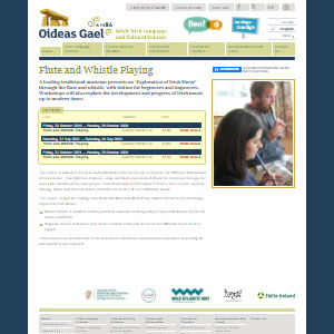 Oideas Gael Flute and Whistle Playing - Best Online Tin Whistle Lessons: Exploration of Irish Music