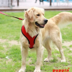 puppia Dog Harnesses - Best Dog Harness for Walking: Adjustable Chest Belt and Quick-release Buckle
