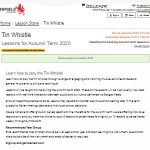 10 Recommendations: Best Online Tin Whistle Lessons (Oct  2020): Tin Whistle for Autumn Term