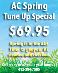 Spring Tune Up Special