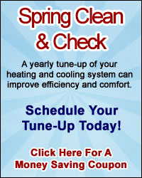 Spring Clean & Check