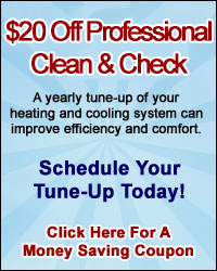 $20 Off Professional Clean & Check