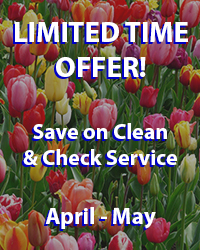 Clean & Check Offer