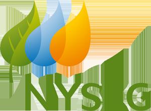 NYSEG Residential Natural Gas Rebate Program