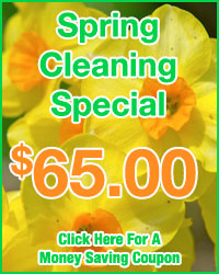 Spring AC Clean & Check