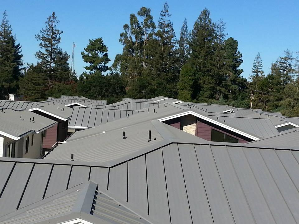 Metal Roof Image 3