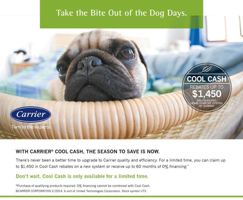 Cool Cash #2