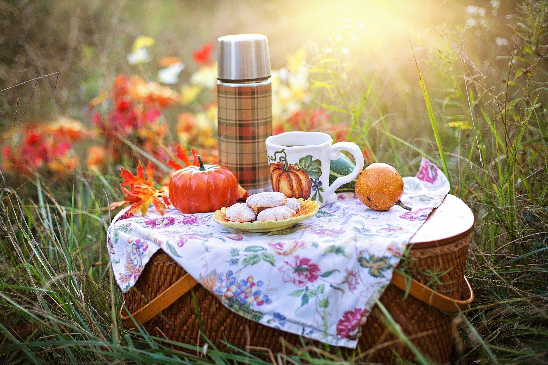 October Fall Specials