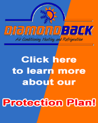 Click here to learn more about our Protection Plan!