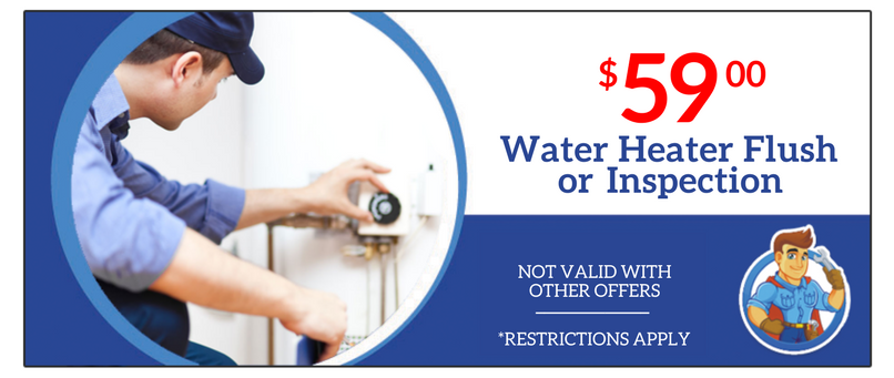 Water Heater Flush or Inspection