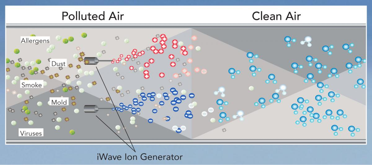 how iWave works