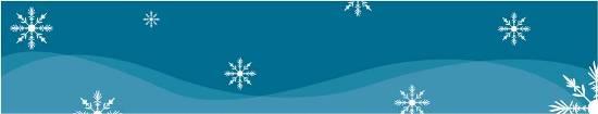 snowflakes_banner_(shrunk)