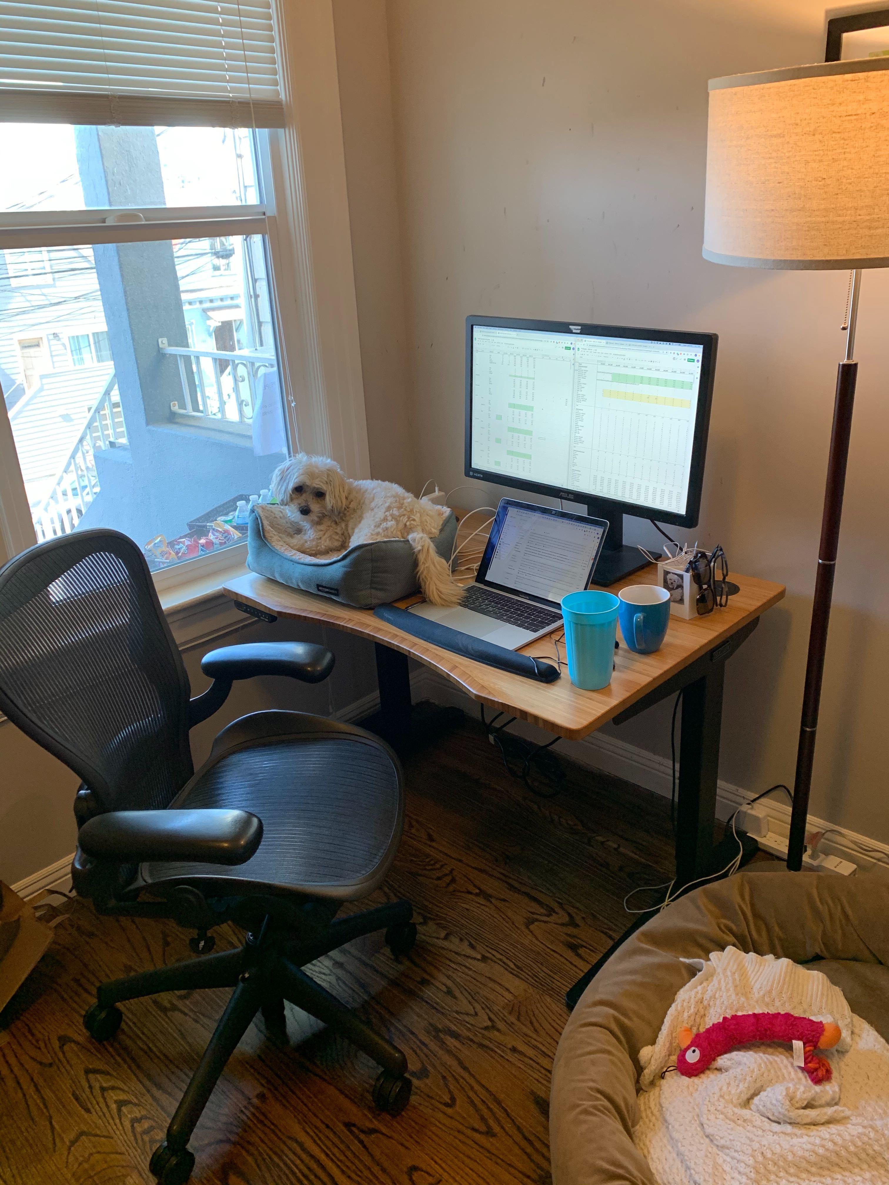 Home office setup of Dan Adler, VP Business